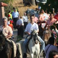 Yo, los caballos y los piostros